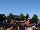 Zomer in Gelderland_5